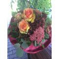 AMARYLLIS Blumen Knopp