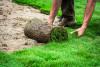 Bild: Antonio De Meo Garten- und Landschaftsbau Garten- und Landschaftsbau