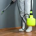 B & M professionals Ges. für Schädlingsbekämpfung und Hygieneberatung mbH
