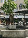 https://www.yelp.com/biz/stadtmarkt-augsburg-2