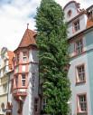 https://www.yelp.com/biz/hotel-barbara-freiburg