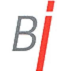 Logo Birken Immobilien
