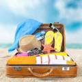 Birlik Reisedatenbank Charterflüge