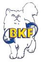 Logo Fahrschule BKF Hubert Löser