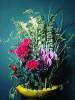 Bild: Bloom - Blumenladen