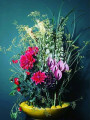 Bild: Bloom Event - Blumenladen in Wuppertal