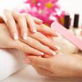 Blueberry Nails Franchise