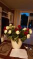 Bild: Blumen Fiorissimo in Offenbach am Main