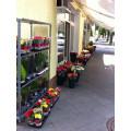 Blumen Hinterstoisser