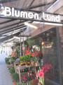 https://www.yelp.com/biz/blumen-lund-hamburg
