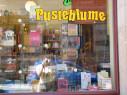https://www.yelp.com/biz/buchhandlung-die-pusteblume-dresden-2