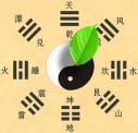 https://www.yelp.com/biz/traditionelle-chinesische-medizin-m%C3%BCnchen