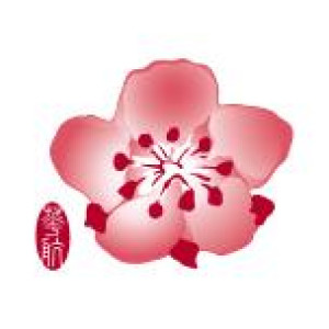 Logo China Airlines Ltd.