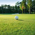 Dammas Green im Golfclub Stadtwald
