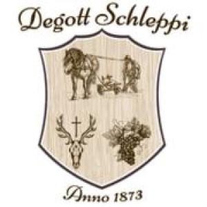 Logo Degott-Schleppi