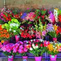 Die kleine Galerie Blumengeschäft