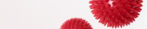 Logo Die Physiotherapie Frank Lange