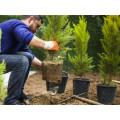 Dipl.-Ing. Bodo Menke Dienstleistungsunternehmen im Gartenbau
