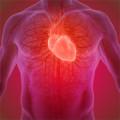 Dr.med. Danny T. Nguyen Facharzt für Innere Medizin und Kardiologie