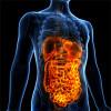 Bild: Dr.med. Malte Ulrich Facharzt für Innere Medizin und Gastroenterologie