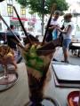 Bild: Eiscafe Dolomiten in Ingolstadt, Donau