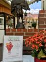 Bild: Eisgarten Grimm in Teterow