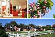 Bauernhof Haltermann 5-Sterne Ferienhäuser auf Fehmarn