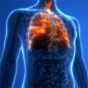 Bild: Fries, Hubertus Dr.med. Facharzt für Innere Medizin in Bochum