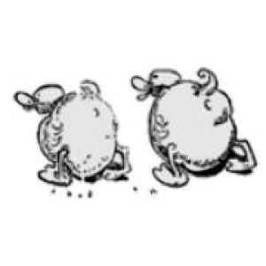 Logo Gänsedieb