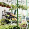 Bild: Gartencenter - Abt. Gartentechnik Baumarkt
