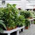 Gartencenter - Abt. Gartentechnik Baumarkt