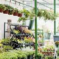Gartencenter - Abt. Holz im Garten Baumarkt