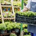 Gartencenter Wassenaar GmbH Garten/Floristik