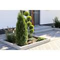 Gartengestaltung Cipoletta