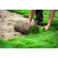 Gartengestaltung & Dienstleistungen Basfeld