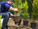 Bild: Gartengestaltung Paradies in München