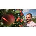 Gerhard Bauer Wein- und Obstbau