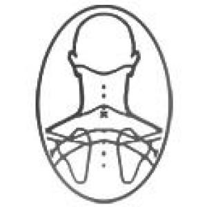 Logo Go physio!