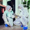 Bild: G.S.D. Gesellschaft für Schädlingsbekämpfung und Desinfektion mbH