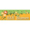 H & H Blumen