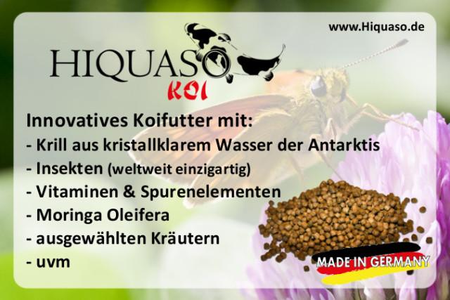https://cdn.werkenntdenbesten.de/bewertungen-hiquaso-mengen-wuerttemberg_10028712_37_.jpg