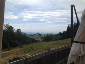 https://www.yelp.com/biz/holzschl%C3%A4germatte-freiburg-im-breisgau