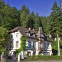 https://www.yelp.com/biz/waldheim-freiburg-im-breisgau