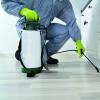 Bild: HSD Gbr.Hygiene  Schädlingsbekämpfung u. Dienstleistungen