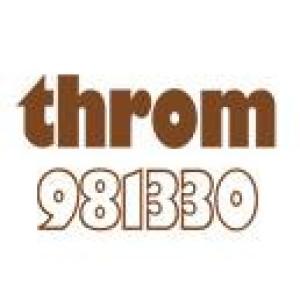 Logo IMMOBILIEN-THROM GmbH Dieter Throm Immobilienwirt Dipl. VWA