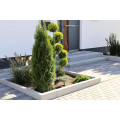 indoorlandscaping GmbH Garten und Landschaftsplaner