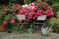 Logo Seidel Garten- und Landschaftsbau