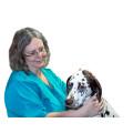 Kleintierpraxis Dr. Ursula Leyer