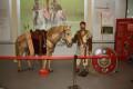 https://www.yelp.com/biz/limesmuseum-aalen