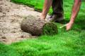 Bild: Lugert Garten- und Landschaftsbau in Bruchsal